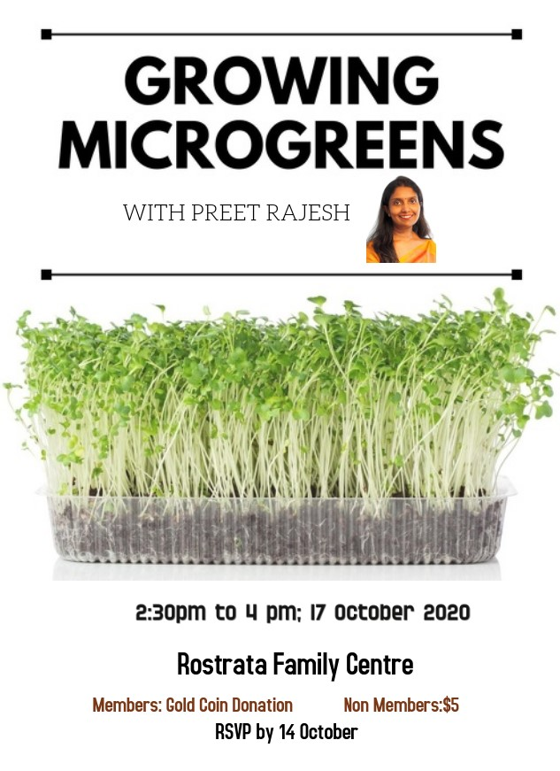 Growing Microgreens: Workshop with Preet Rajesh on 17th October